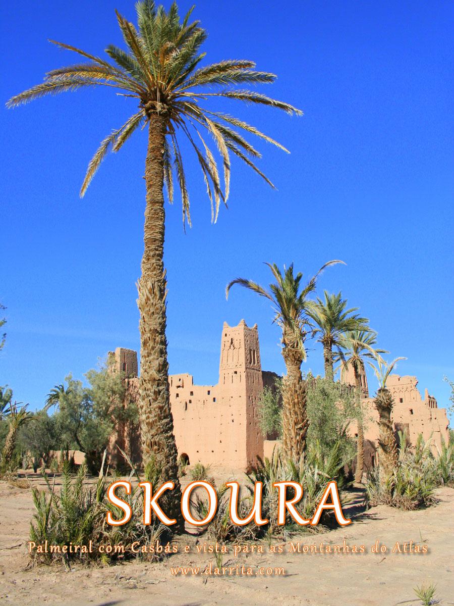 Oásis Skoura, Palmeiral com Casbahs 40KM de Ouarzazate Marrocos