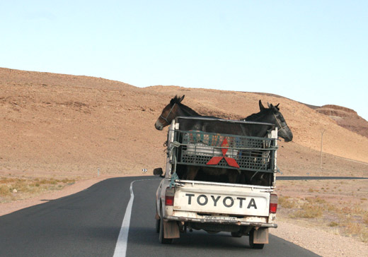 Viajar em Marrocos de Carro, Conduzir em Marrocos