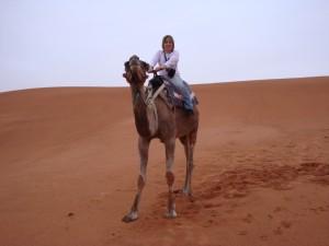 Passeio camelo nas Dunas de Erg Chebbi no Deserto do Saara